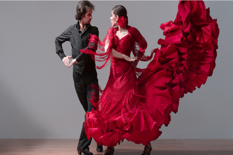 Private Flamenco Class - 0