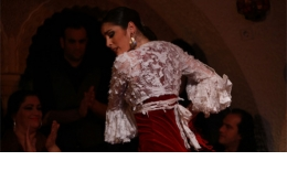 Flamenco Night in Poble Espanyol